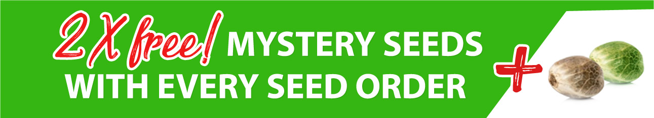 free mystery seeds with every cannabis seed order